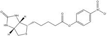 D-Biotin 4-nitrophenyl ester 100mg