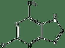 2-Chloroadenine 1g