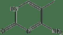 5-Methylcytosine 1g