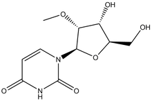 2'-O-Methyluridine 1g