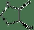 (S)-(-)-3-Hydroxy-2-pyrrolidone 1g