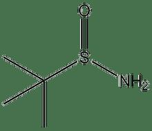 2-Methyl-2-propanesulfinamide 1g