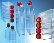 Tissue Culture Flasks