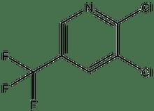 2,3-Dichloro-5-(trifluoromethyl)pyridine 25g