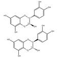 (+/-)-Catechin-[13C3] 1mg