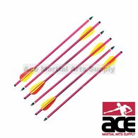 "5 NEW 14"" ALUMINUM METAL BOLTS ARROWS FOR 150 & 180 lb CROSSBOW ARCHERY XBOW"
