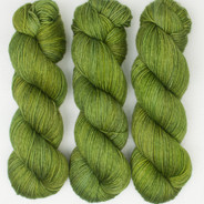 Leapin' Lizards Lively DK