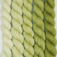 High Five Set Ombre'  - Green Tea (Artisan Sock, 5 x 100 yards)
