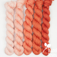 High Five Set Ombre' - Conch (Artisan Sock, 5 x 100 yards)