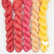 High Five Set #3 - 5 quarter skeins, Artisan Sock
