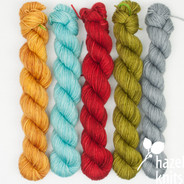 High Five Set #21 (Artisan Sock, 5 x 100 yards)