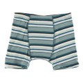 Kickee Pants Boxer Briefs, Multi Agriculture Stripe
