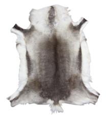 Reindeer Hide (120 x 120cm) (RD310)