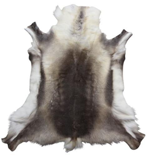 Reindeer Hide (135 x 120cm) (RD313)