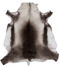 Reindeer Hide (115 x 110cm) (RD303)