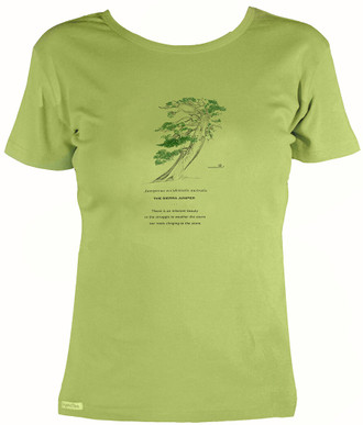 Women's Organic Cotton Short Sleeve Tree Designs
