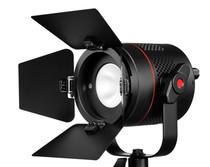 Fiilex P360EX On Camera LED Lighting with Barn Doors