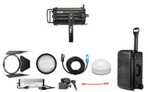 Fiilex FLXL254 L254 Two Light Large Travel Kit