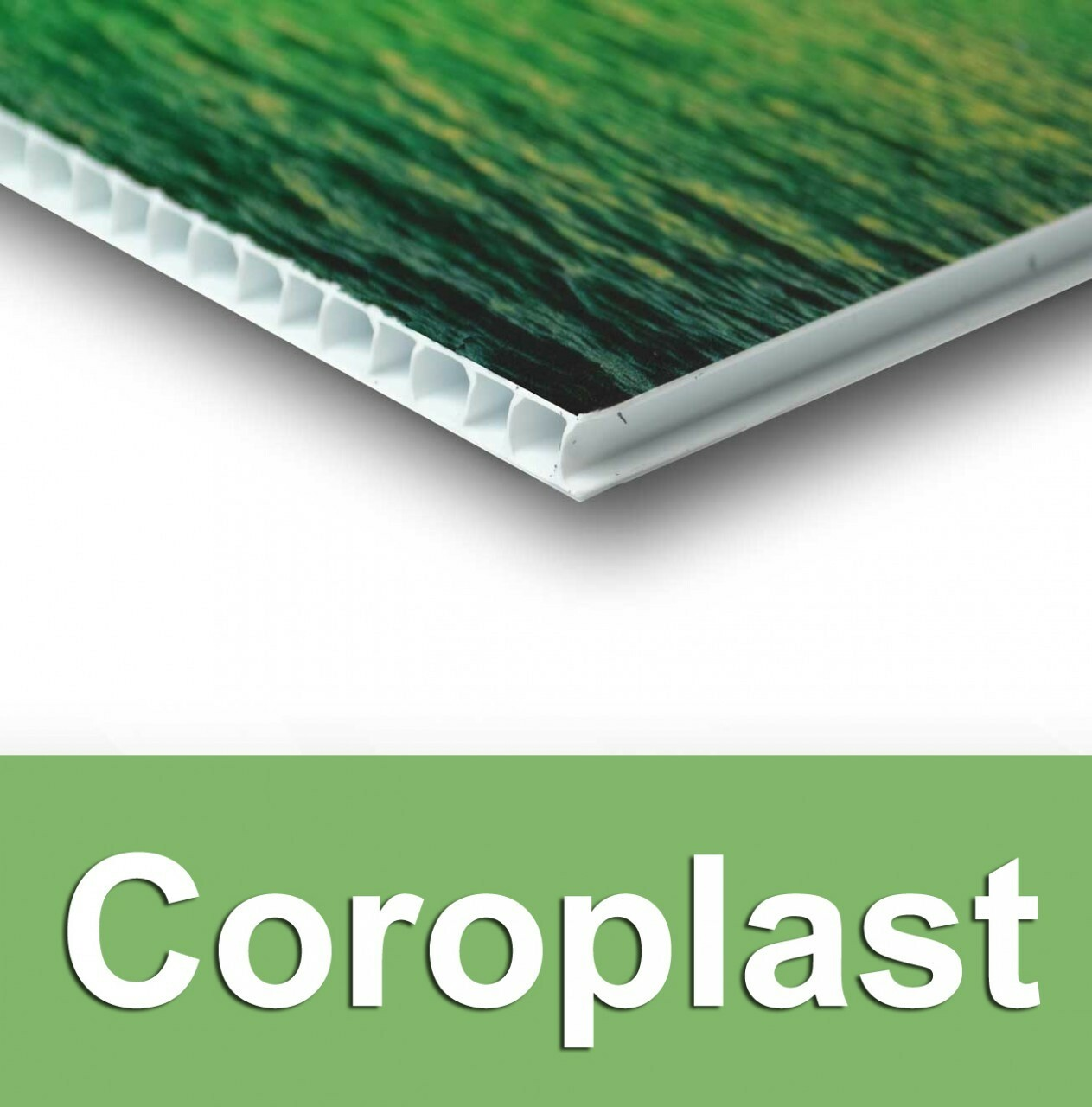 Coroplast Sign 4 mil (1/8