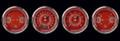 V8 Red Steelie Series Four Gauge Set - Classic Instruments - V8RS05SHC
