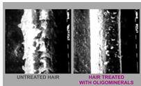 hair-treated-with-oligominerals-complex.jpg