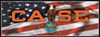CA011-BAN  Case Eagle on USA Flag Banner