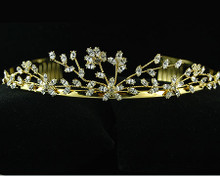 Marquee shaped Clear Crystals on a Gold Tiara