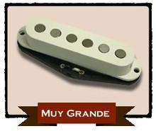 Rio Grande Muy Grande - Strat