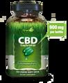 Irwin Naturals CBD 15 mg 60 sg
