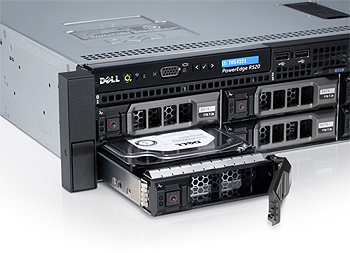 Dell PowerEdge R520 Hard Drives