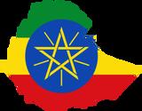 Ethiopian Natural Sidamo - Medium Roast