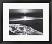 Birds on a Beach - Ansel Adams