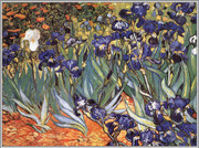Irises in the Garden, Saint-Remy, II c.1889 - Vincent Van Gogh