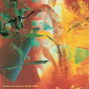 FAB! Gerhard Richter Merlin Art Print Poster