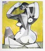 Pablo Picasso Nu Accroupi