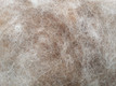 choose your filling: Eco Wool or EcoWool-alpaca blend