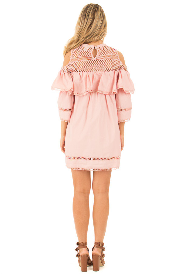Blush Baby Doll Dress with Sheer Yoke and Ruffle Detail back full body