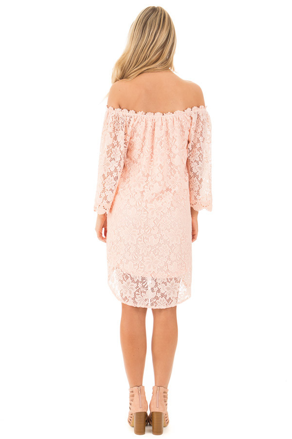 Blush Off the Shoulder 3/4 Sleeve Detailed Lace Dress back full body