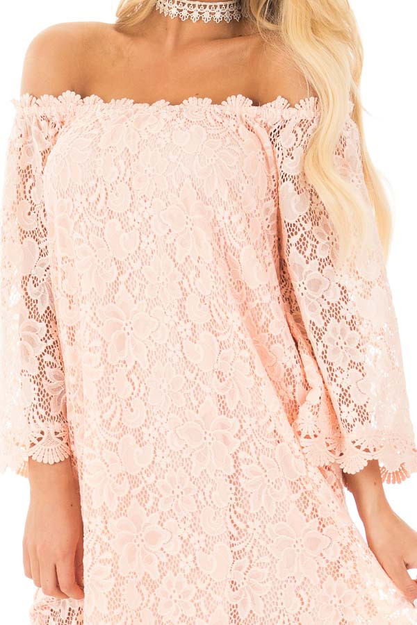 Blush Off the Shoulder 3/4 Sleeve Detailed Lace Dress detail