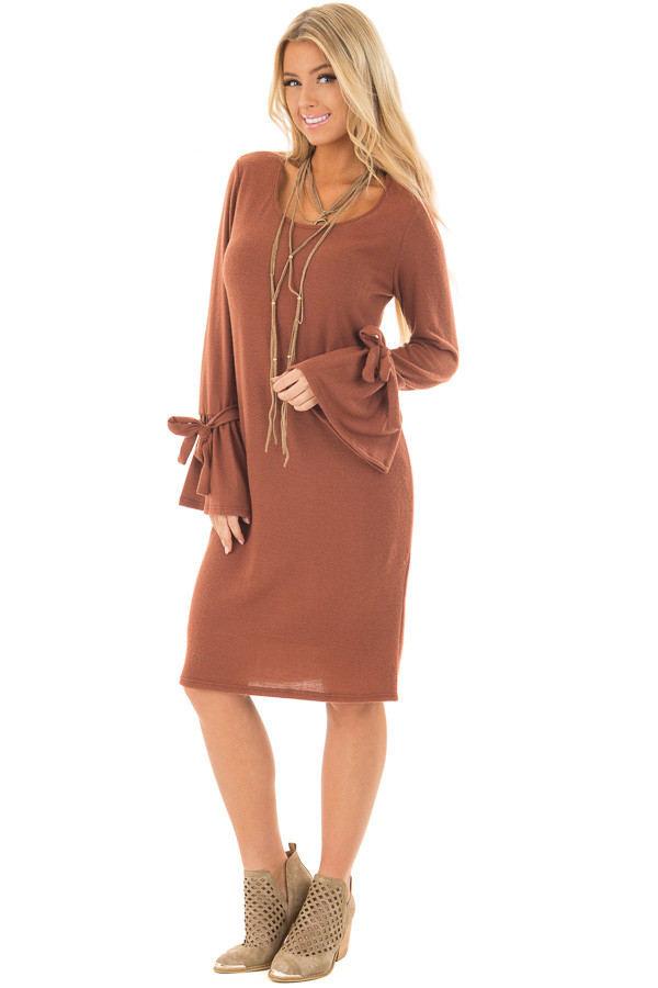 Dark Rust Soft Dress with Sleeve Ties front full body