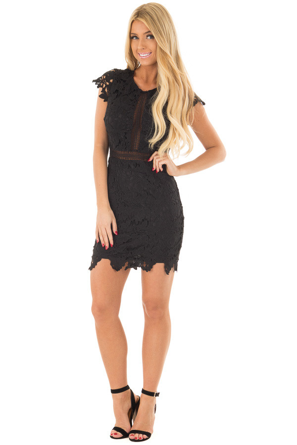 Black Sheer Lace Dress front full body