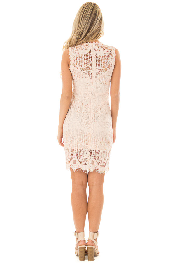 Blush Fitted Lace Dress with Sheer Details back full body