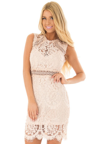 Blush Fitted Lace Dress with Sheer Details front closeup