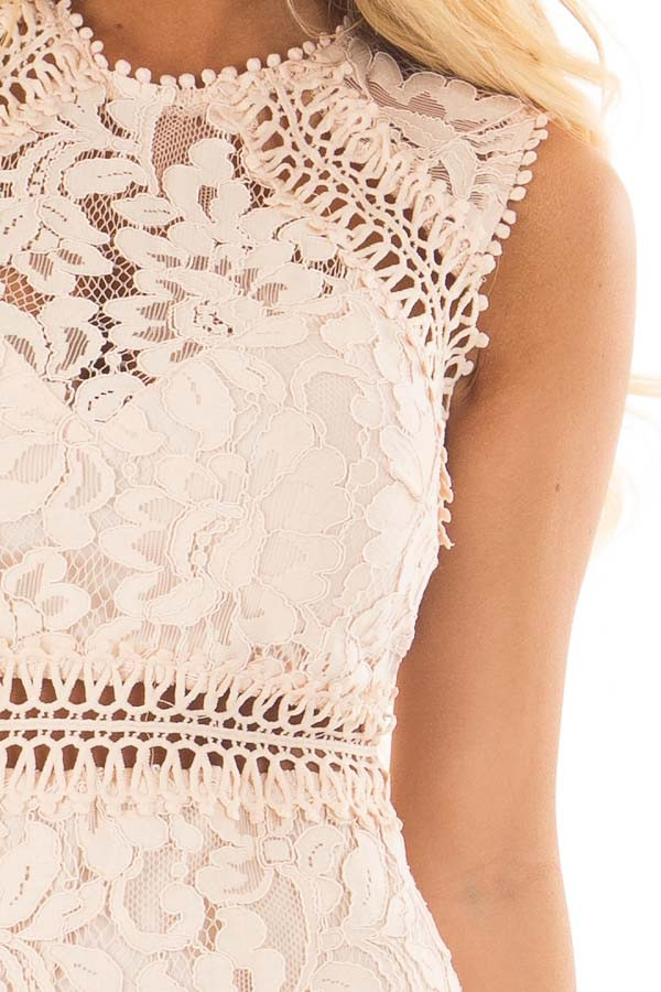Blush Fitted Lace Dress with Sheer Details front detail