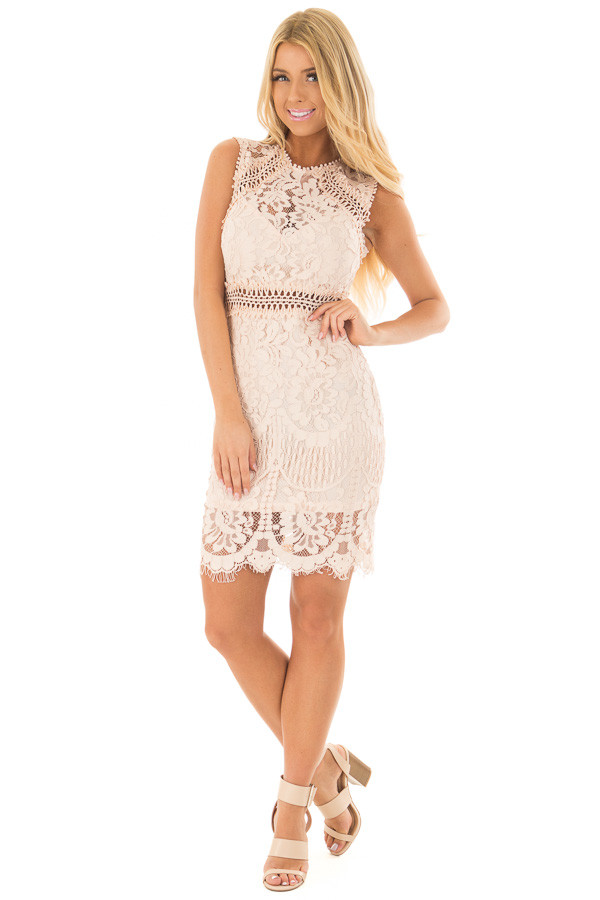 Blush Fitted Lace Dress with Sheer Details front full body