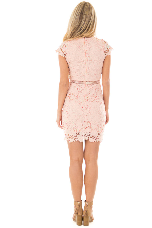 Blush Lace Dress with Sheer Crochet Details back full body