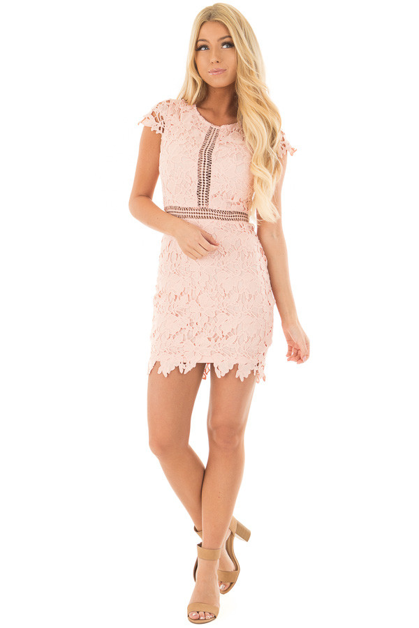 Blush Lace Dress with Sheer Crochet Details front full body