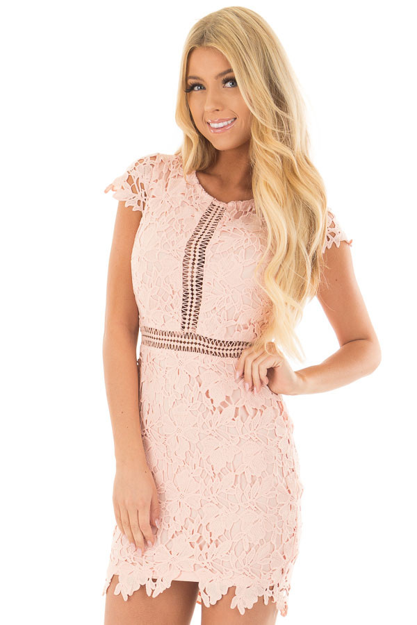 Blush Lace Dress with Sheer Crochet Details front close up