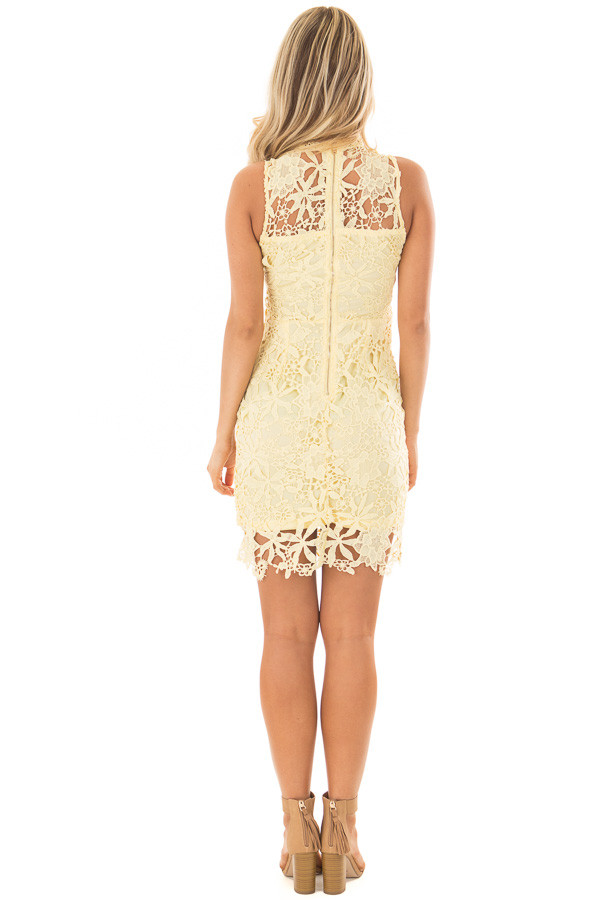 Lemon Yellow Sleeveless Dress with Lining and Sheer Details back full body
