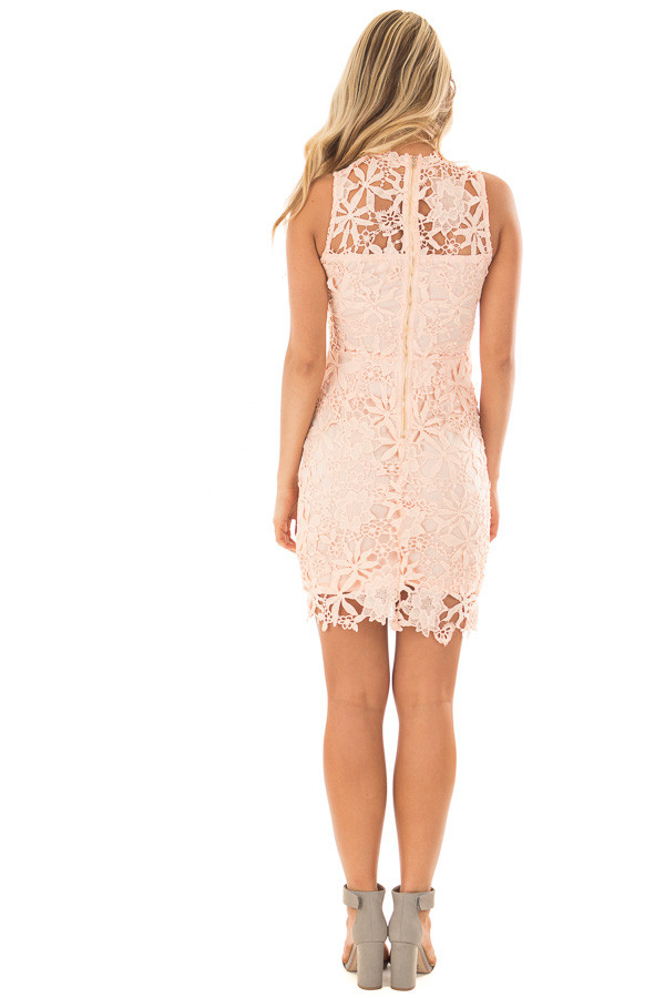 Blush Sleeveless Dress with Lining and Sheer Details back full body